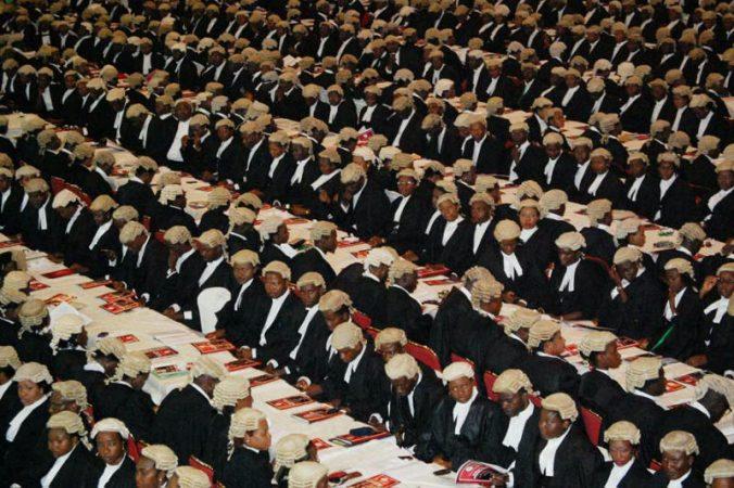 nigerian-lawyers