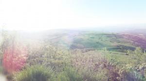 Camino perfect picture