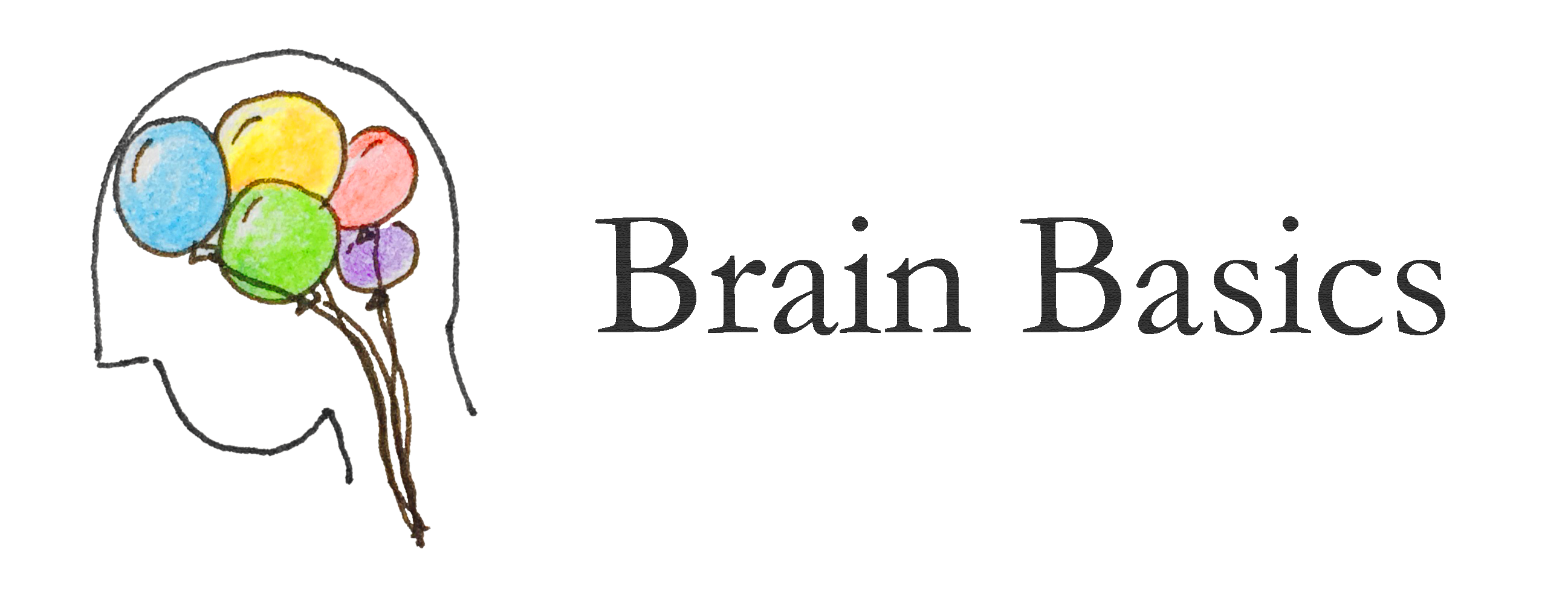 Harvard Brain Basics