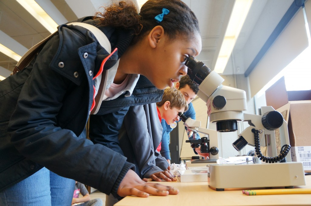 Students look at tissues and stains under microscopes to discover neurons and their structures.