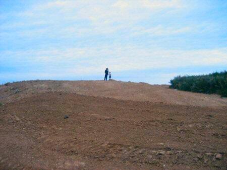 dirt4.jpg