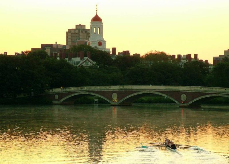 Harvard Rowers
