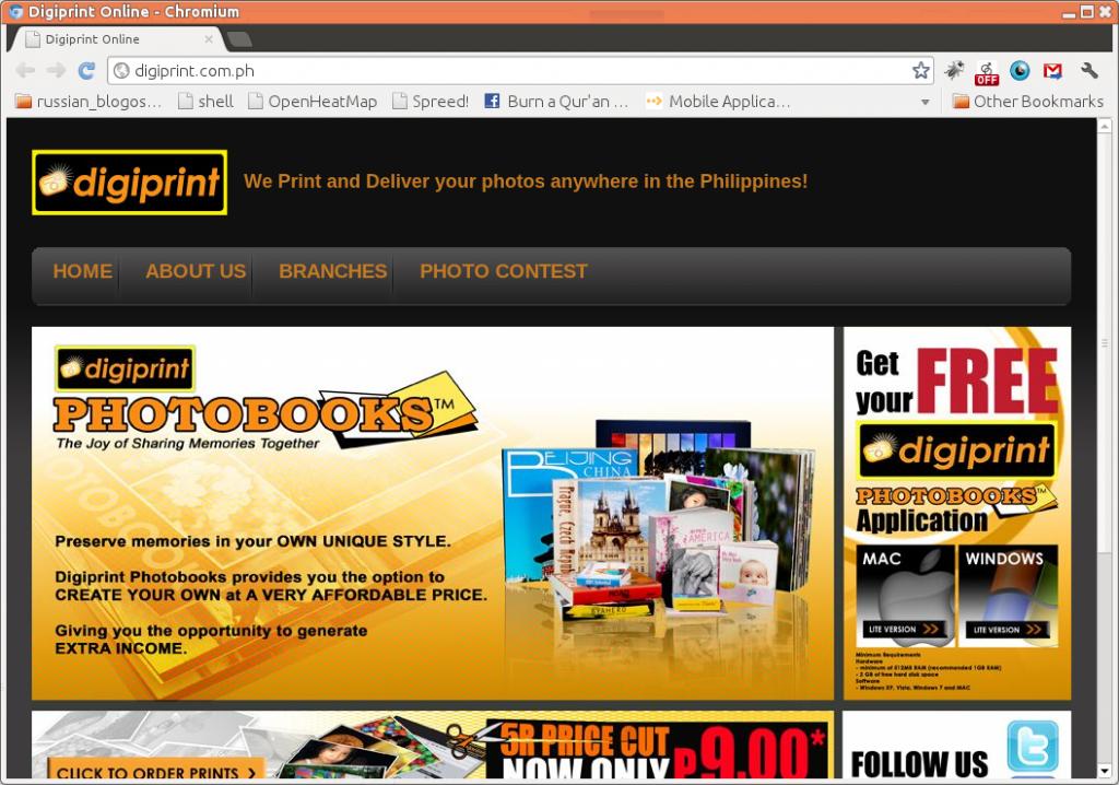 Screen Shot of http://digiprint.com.ph