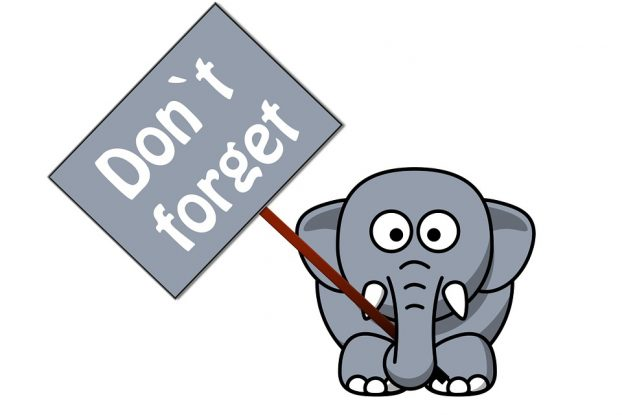 dont-forget-elephant-279901_960_720