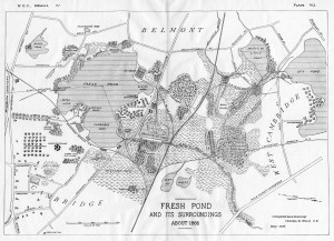 Map of Fresh Pond, c.1866, from The Birds of the Cambridge Region of Massachusetts; image provided by Charles Sullivan, Cambridge Historical Commission