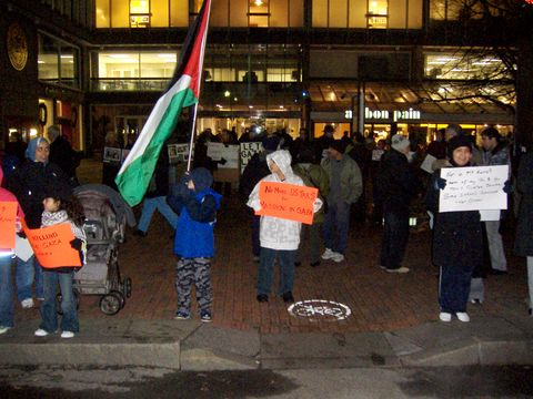 Young demonstrator holding Palestinian flag.