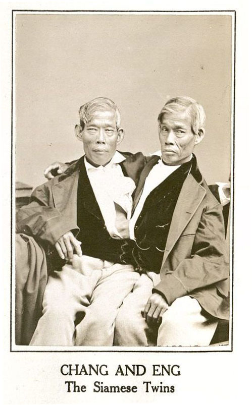 Chang and Eng Bunker. Frederick Hill Meserve's Historical Portraits (MS Am 2242)