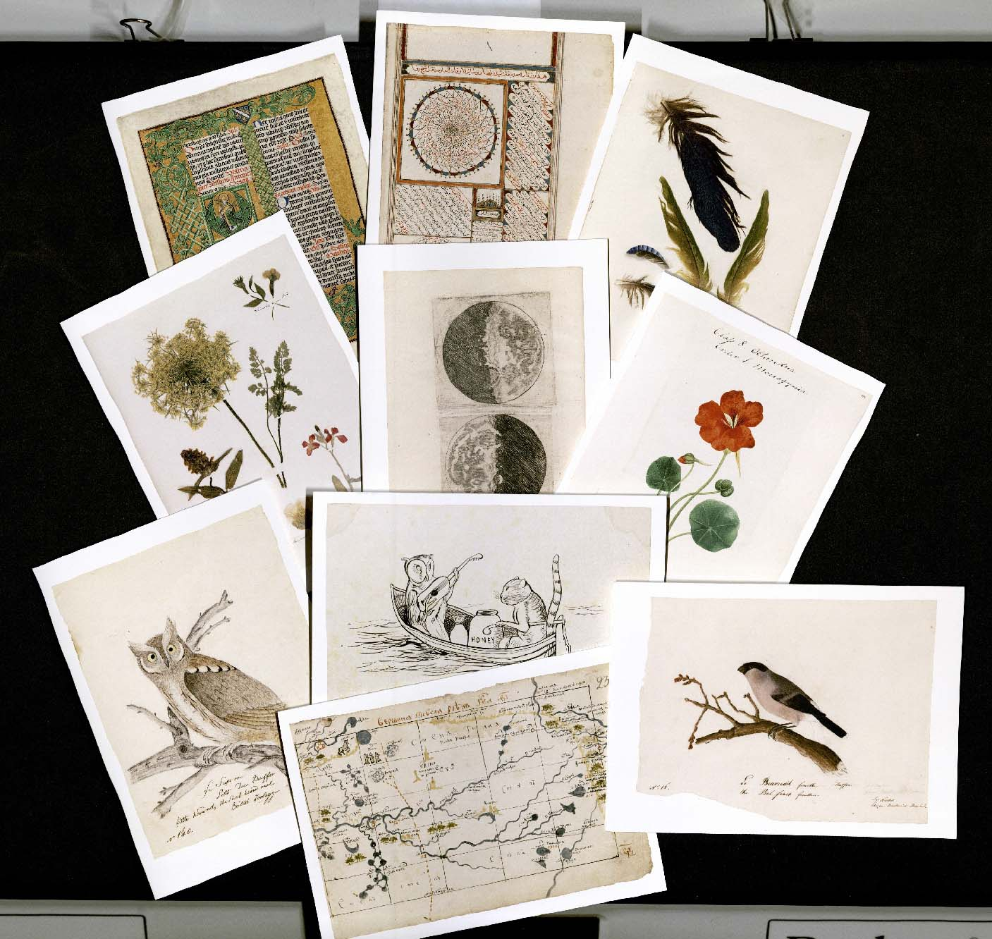 Houghton Library Note Cards