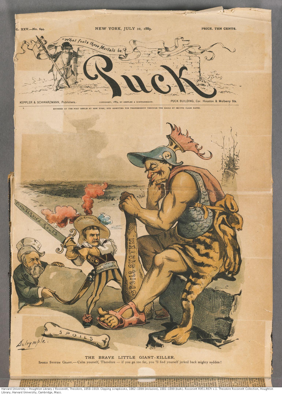 Roosevelt, Theodore, 1858-1919. Clipping scrapbooks, 1881-1899 (bulk). Roosevelt R951.R67t v.1.