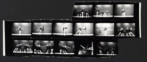 © The Dance Theatre of Harlem (Arthur Mitchell Co.), 1973. MS Thr 482, Box 17, Dance Theatre of Harlem (Arthur Mitchell Co.), 1973, Harvard Theatre Collection, Houghton Library, Harvard University.