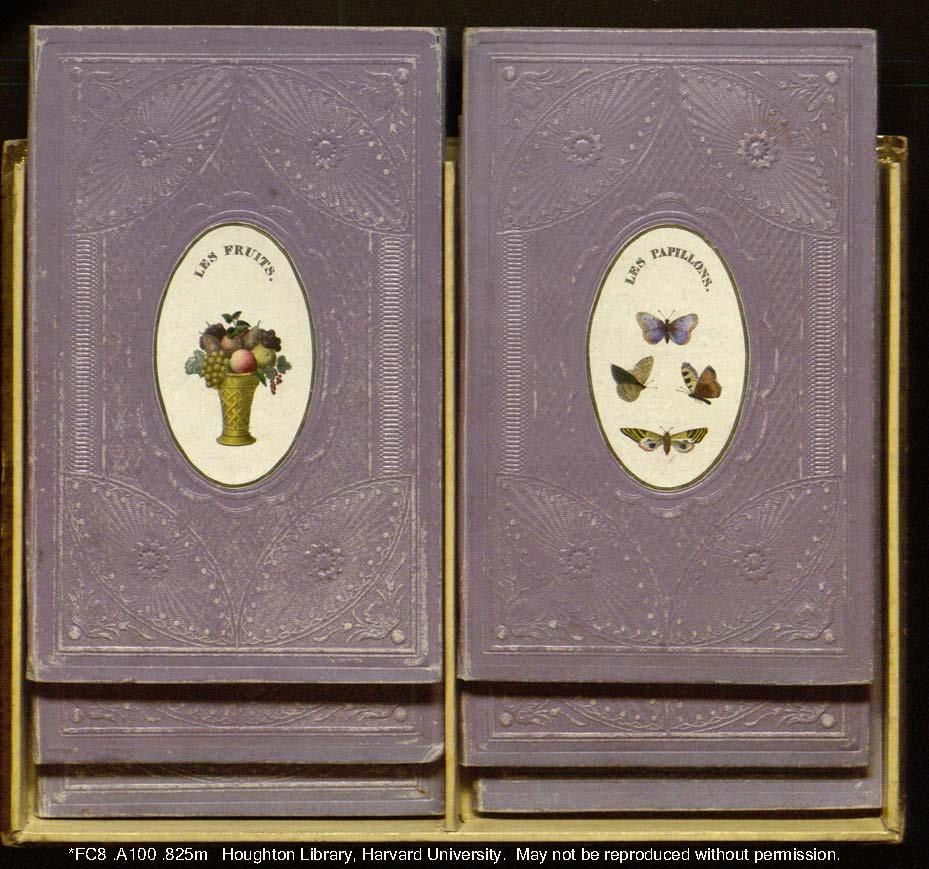 purpleinbox.jpg