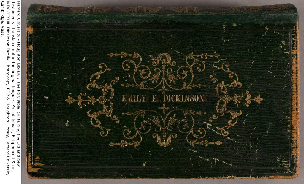 emily dickinson wrote essays and novels Did emily dickinson wrote essays novels itrsquos a joyful and heart-swelling moment where everyone lets their guard down and gets a little silly.