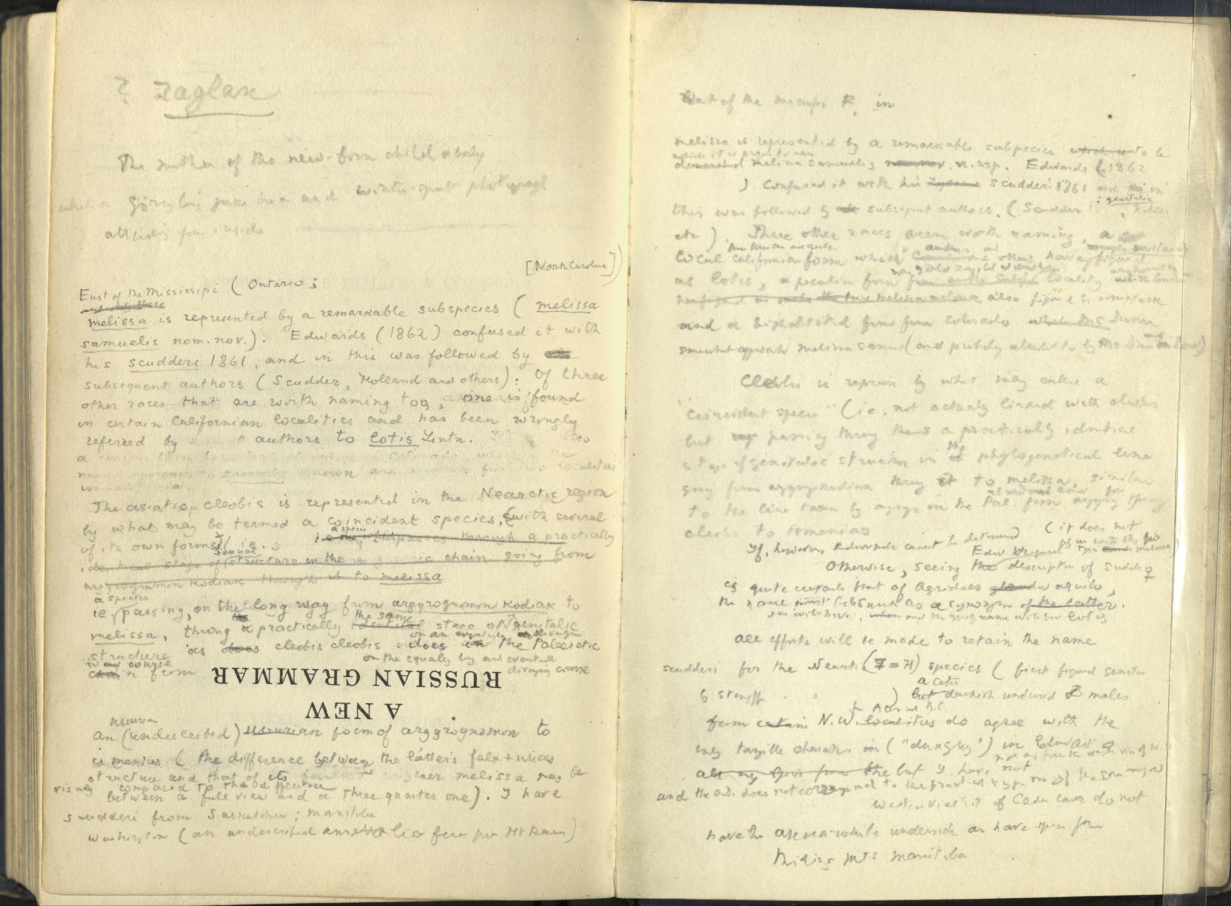 Nabokov essay