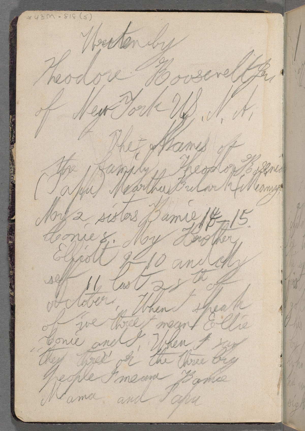 Travel diary kept while on a trip to Europe with his parents, age 11, 1869. Theodore Roosevelt Collection, Houghton Library, Harvard University, MS Am 1454.55 (5)