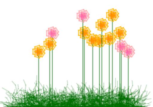 Programmed Wild Flower Garden