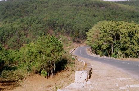 Shillong-Jowai_Road1.jpg
