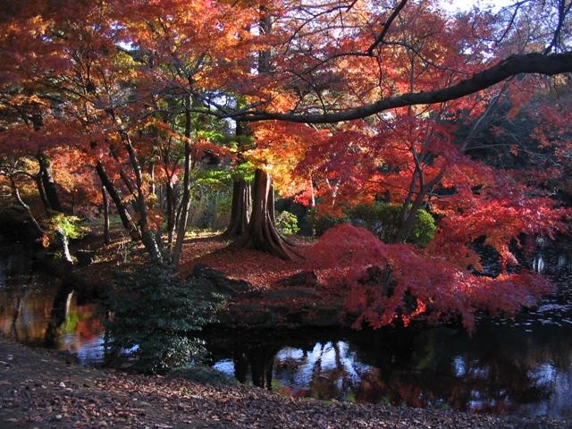 Japan 2006 305.jpg