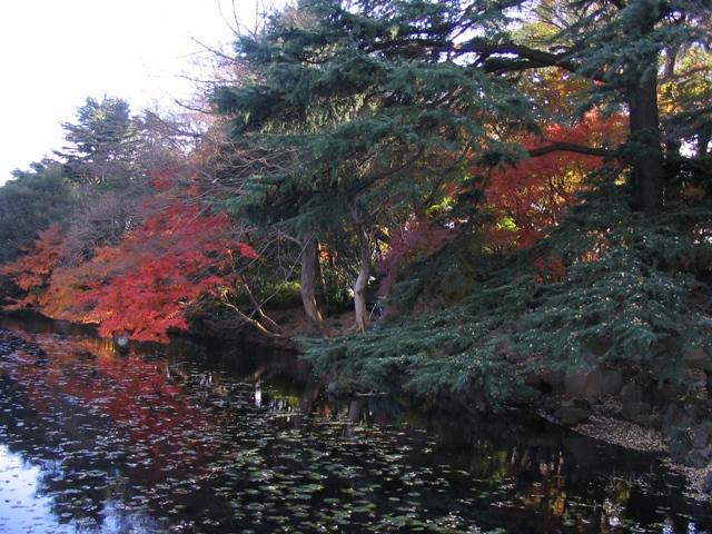 Japan 2006 310.jpg