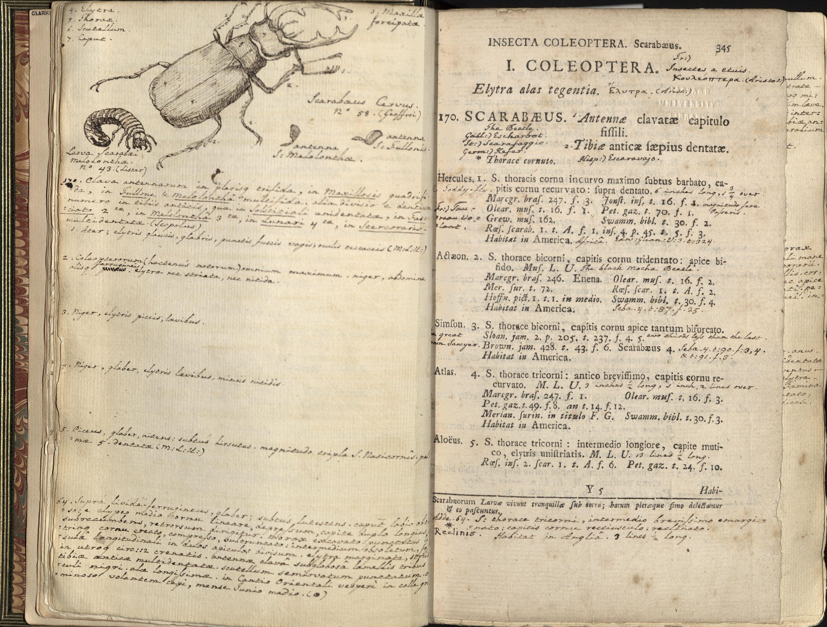 » The Poet as Naturalist: Thomas Gray's copy of Linnaeus ...