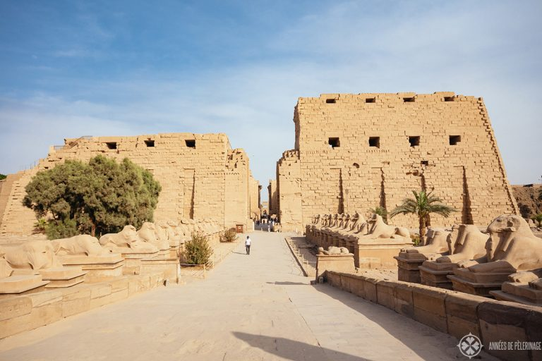 What to Do in Luxor? Top 15 things to do in Luxor, Egypt 6